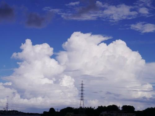 きのうの関東の空 雄大積雲を量産予定